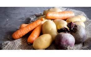 Légumes de Genève GRTA ou BIO Sélection de légumes du jour