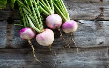 Organic Turnip from Geneva