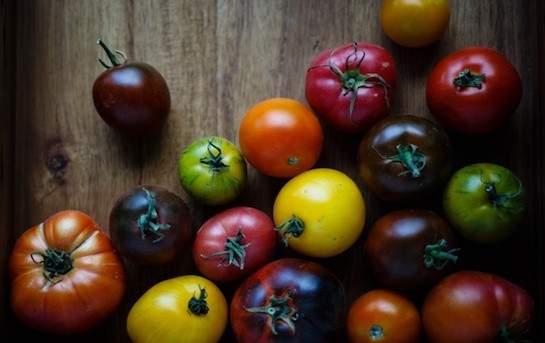 Tomates mélanges BIO GRTA