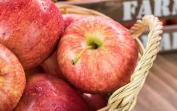 Pommes Pinova GRTA