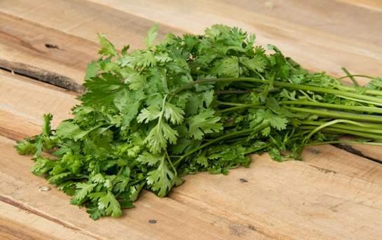 Flat-leaf parsley