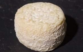 Crottin de Chèvre Chavignole