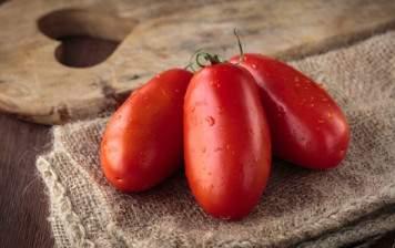 Tomates San Marzano BIO