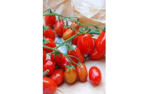 Tomates Datterino
